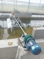 跑道式藻类反应池