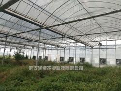 温室大棚生产厂
