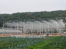 蔬菜温室大棚厂家