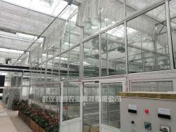 农业温室大棚厂家