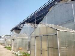 单栋温室大棚设计建造